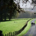 Walking at The Falcondale