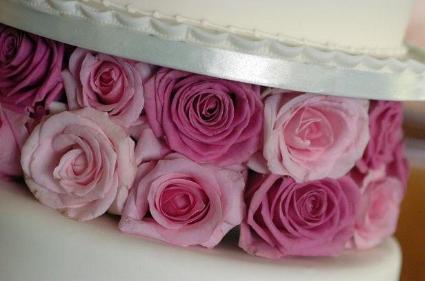 Celebration Cake - Pink