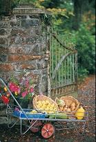 Llanerchaeron National Trust property
