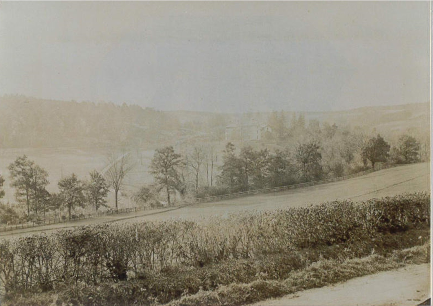 Falcondale History